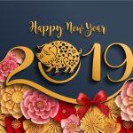 新年のご挨拶~2019年のビジョン